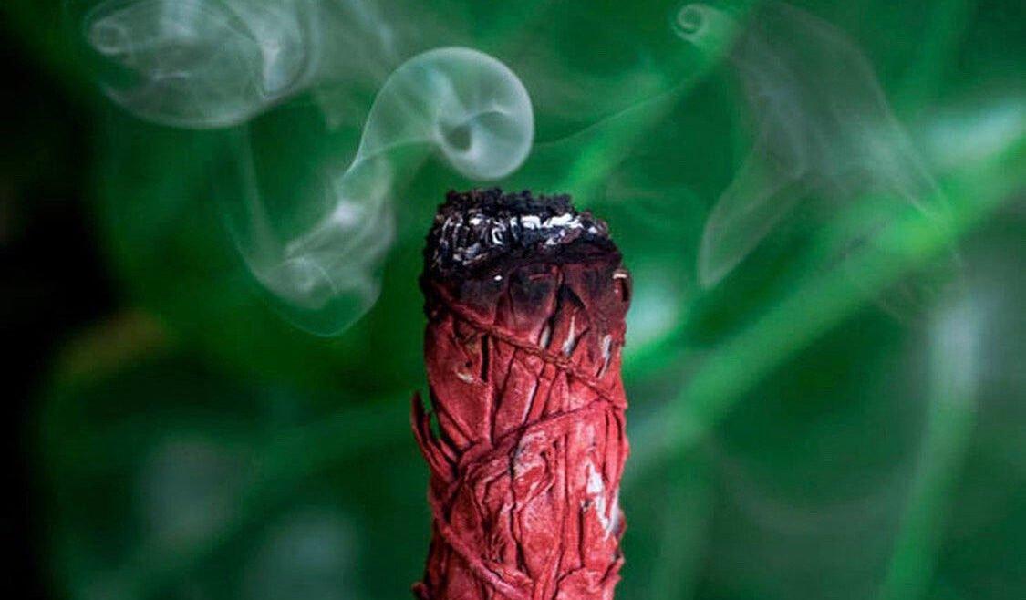 Žajbelj, ki je obdan z rdečo zmajevo krvjo iz Sumatre?